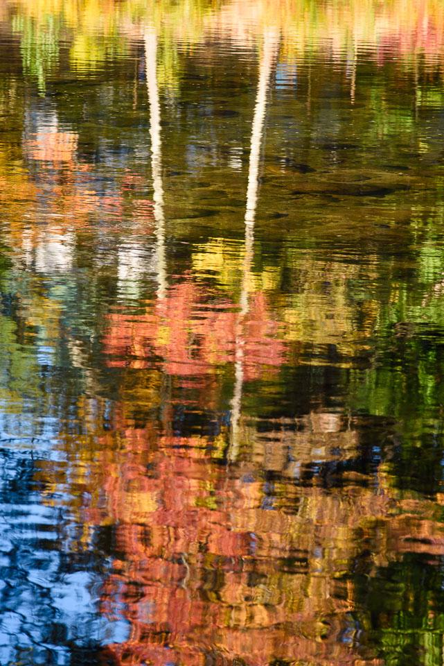 MAB-20161007-NH-SACO-RIVER-REFLECTION-8103982.jpg